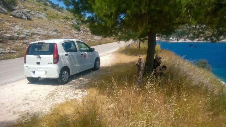 Renting car 1